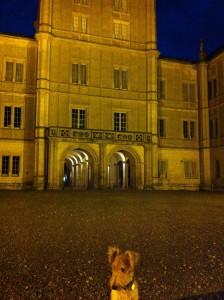 23.10.11 Fiete vor dem Coburger Schloss.